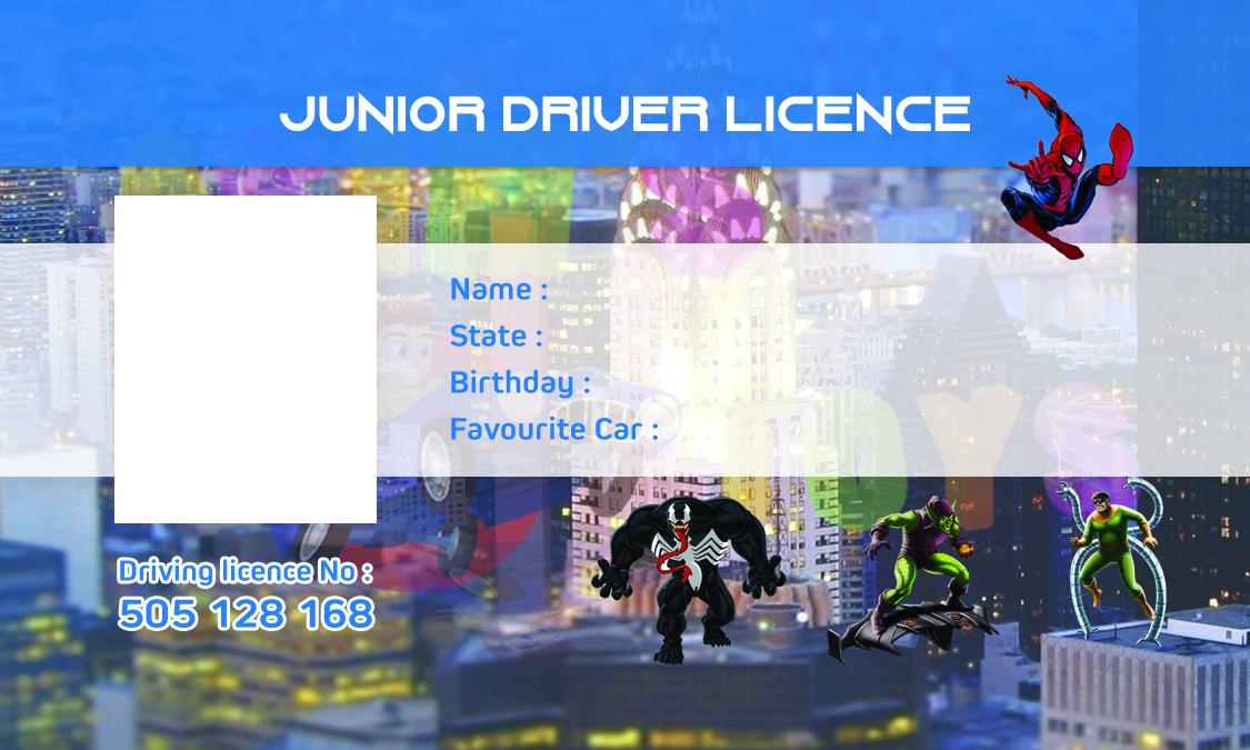 Personalised Kids Driver Licence | Toys n Wheels